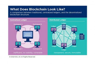 Amplifying The Power Of Blockchain—What You Need To Know