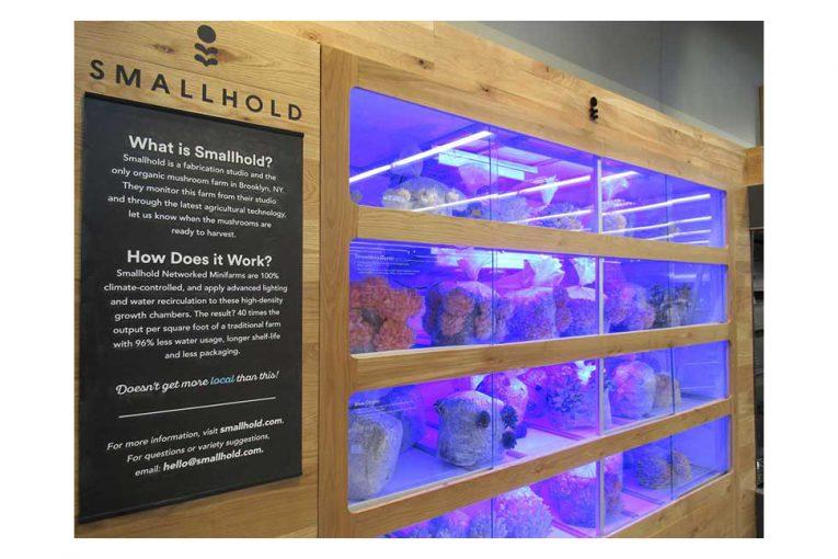 whole foods offers dining options mushroom farm. Black Bedroom Furniture Sets. Home Design Ideas