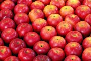 Take a Bite Out Of Hunger Donates 219K Pounds Of Apples