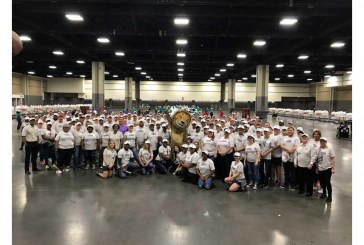 Hundreds Of Food Lion Associates Take Part In Food Bank 'Sort-A-Rama' Events
