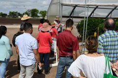 Dr. Leskovar explains high-tunnel or hoop-house production to area producers at a recent field day at the Uvalde center. (Texas A&M AgriLife Research photo)