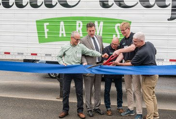 Little Leaf Farms Grows Hydroponic Greenhouse In Massachusetts