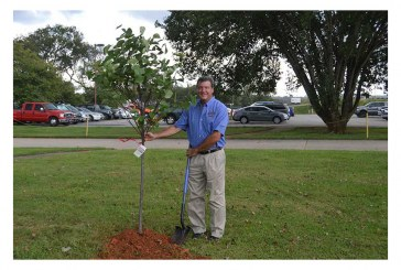 BAM Partners With One Tree Planted On Retail Promotions