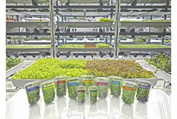 Bowery Opens Second Indoor Farm In New Jersey