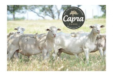 Capra Foods Is First U.S. Lamb Company To Receive 'Step 5' Certification