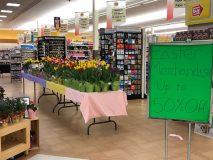 Stop & Shop center store strike