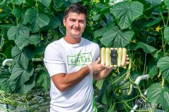 NatureFresh Farms Introduces Unveiled Mini Cucumbers